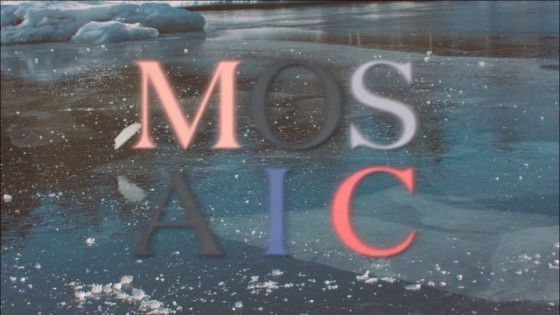 Mosaic 2017