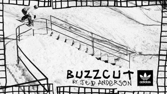 Buzzcut – Jed Anderson